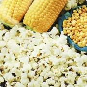 Кукуруза Попкорн Пломик