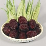 Кукуруза Strawberry Corn
