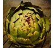 Плодовые овощи