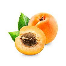 Саженцы абрикоса Купить