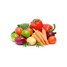 Голландские семена овощей Купить