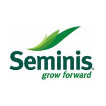 Семена Seminis Купить