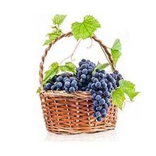Середні сорти винограду Купити