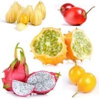 Экзотические плодовые Купить