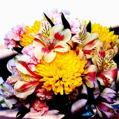 Квіти на зріз Купити