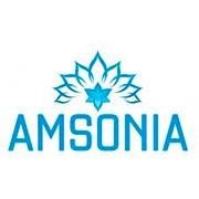 Amsonia Купити