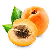 Саджанці абрикосу Купити