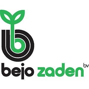 Насіння Bejo Zaden Купити