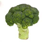 Насіння капусти броколі Купити