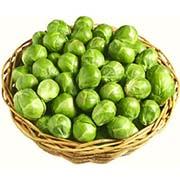 Насіння брюссельської капусти Купити