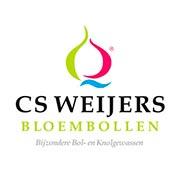 CS Weijers Купить