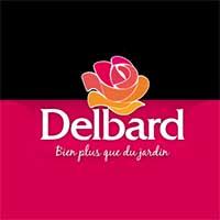 Розы Делбар Купить