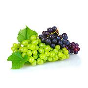 Саженцы винограда Купить