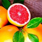 Грейпфрут Купить