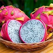 Питахайя (Драконовый фрукт) Купить