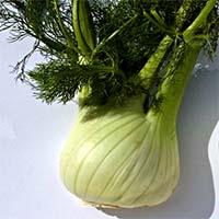 Малораспространенные овощи Купить
