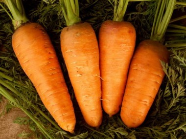 Морква Абако фото