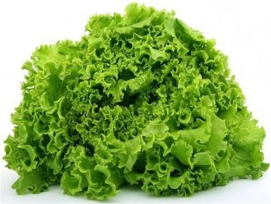 Насіння салату
