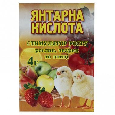 Янтарна кислота 4 г фото цена