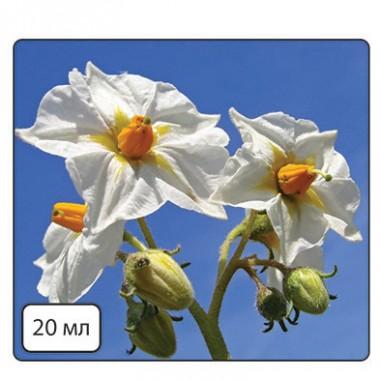 Кода Бор (для покращення цвітіння з БІО.) купить онлайн