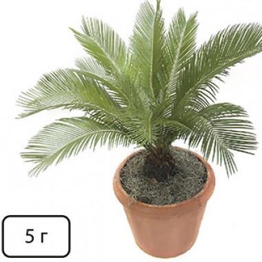 Скоттс (для пальм) фото цена