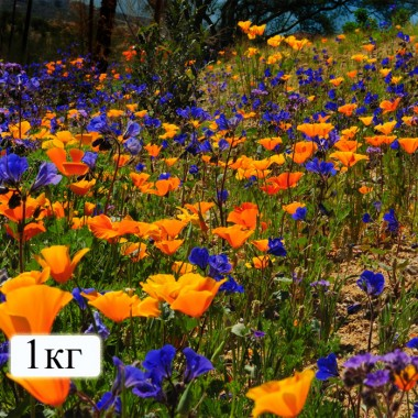 Мінеральні добрива Для квітів універсальне (на 40 м. кв) фото цена