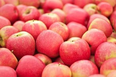 Яблуня Пінк Леді почтой