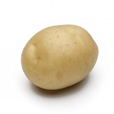 Насіння картоплі