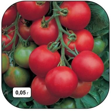 Насіння помідорів купить