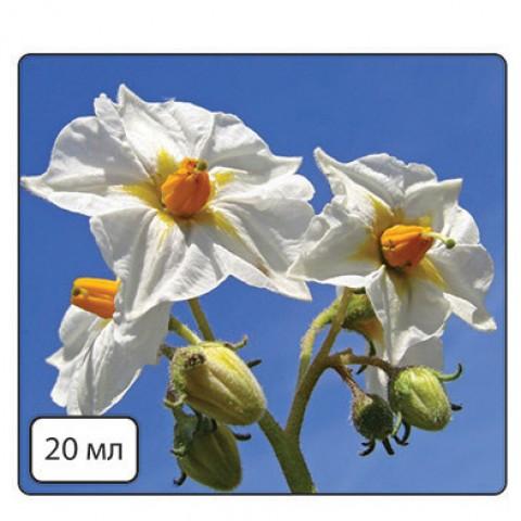 Кода Бор (для покращення цвітіння з БІО.) фото