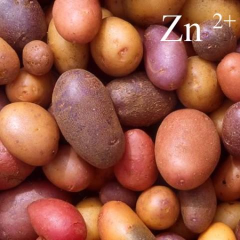 Кода Zn-L (для картоплі з БІО.) фото