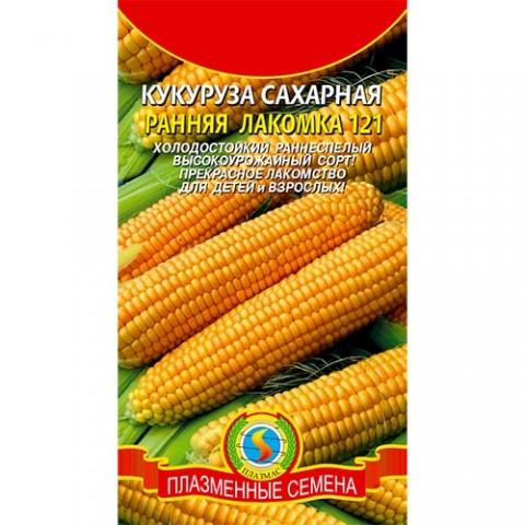 Кукурудза Рання лакомка 121 фото