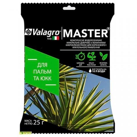 Комплексне мінеральне добриво для пальм і юк Master (Майстер), 25г, NPK 17.6.18 фото