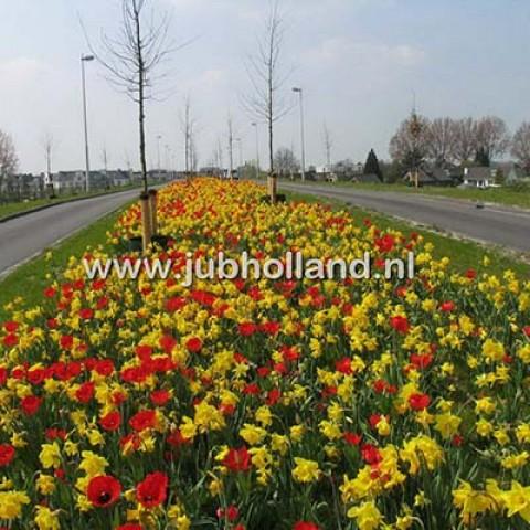 Мікс ландшафтний Arnhem фото