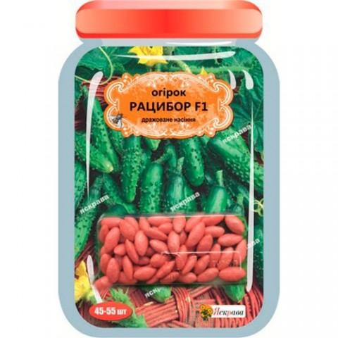 Огірок Рацибор F1 дражоване насіння фото