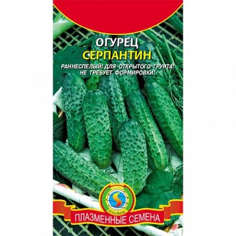 Огірок Серпантин фото