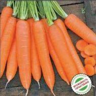 Морква Сіркана фото
