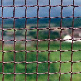 Коричнева Пластикова Садова Сітка з розміром вічка 19*19 мм фото