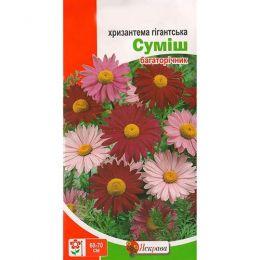 Хризантема Гігантська сумiш фото