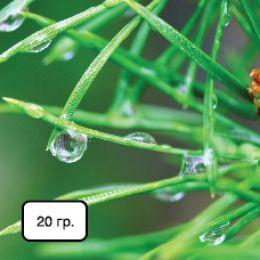 NPK+Мікроелементи (для в/зел. та хвойних) фото