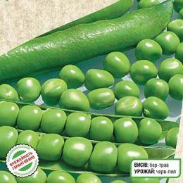 Горох овочевий Дінга фото