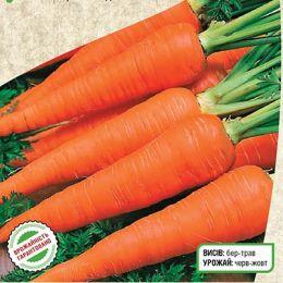 Морква Червона Бояриня фото