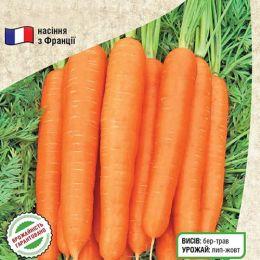 Морква Тіп Топ фото