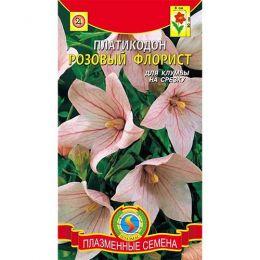 Платикодон Рожевий флорист фото