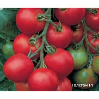 Семена помидор и томатов
