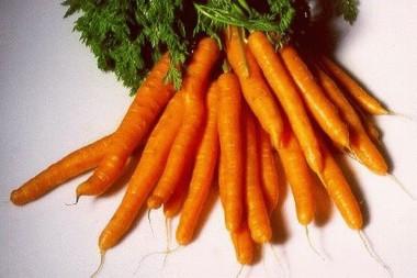 Морковь Каротан в киеве