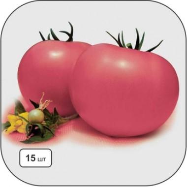 Cемена овощей купить