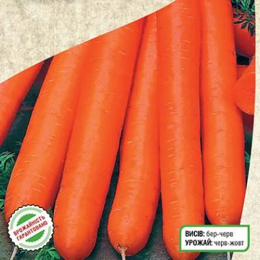 Морковь Памела описание