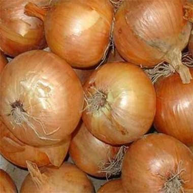 Клубни и луковицы