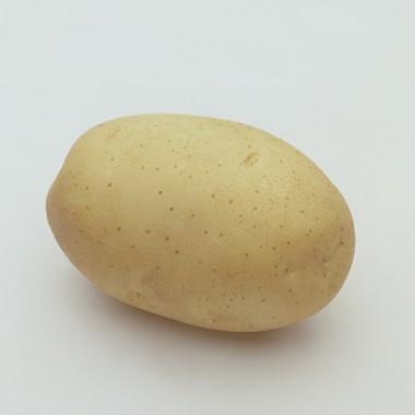 Картофель Fabula  фото